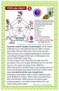 Teori 5 unsur